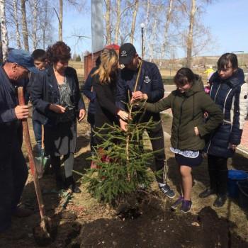Посади дерево- подари жизнь